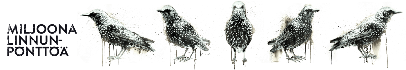Aihesivun Miljoona linnunpönttöä pääkuva