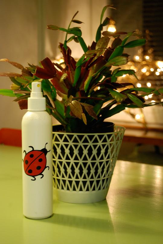 Suihkepullo kasvienhoitoon.