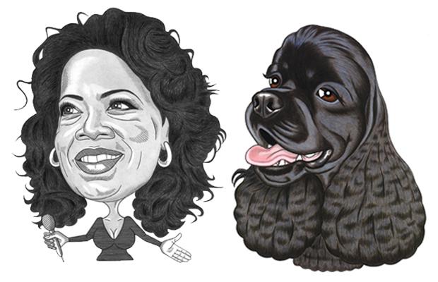 Oprah ja spanieli. Kuva: Tommi Vuorinen