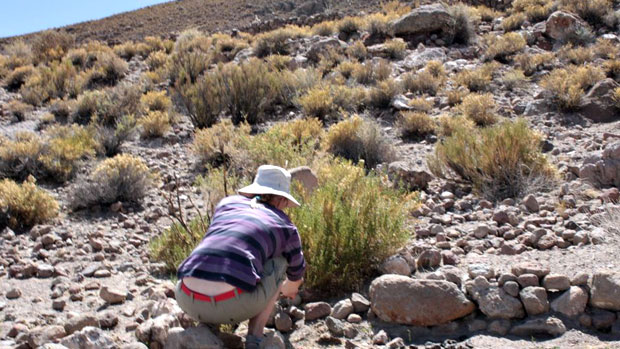 Mervi Leppäkorpi Boliviassa. Kuva:Nelvi Huayllani
