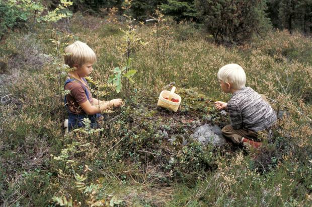Vie lapsi luontoon. Kuva: Arja Lento, 1977, Yle