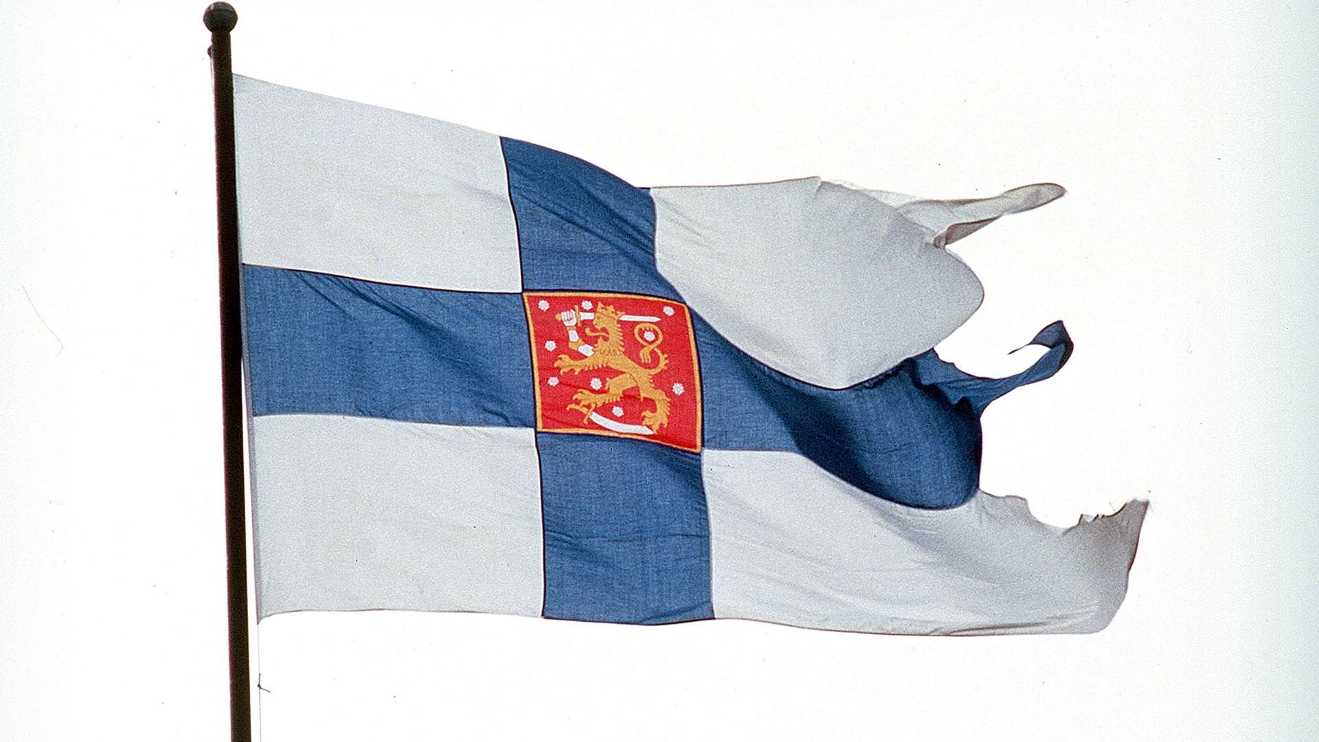 Puolustusvoimien Lippu