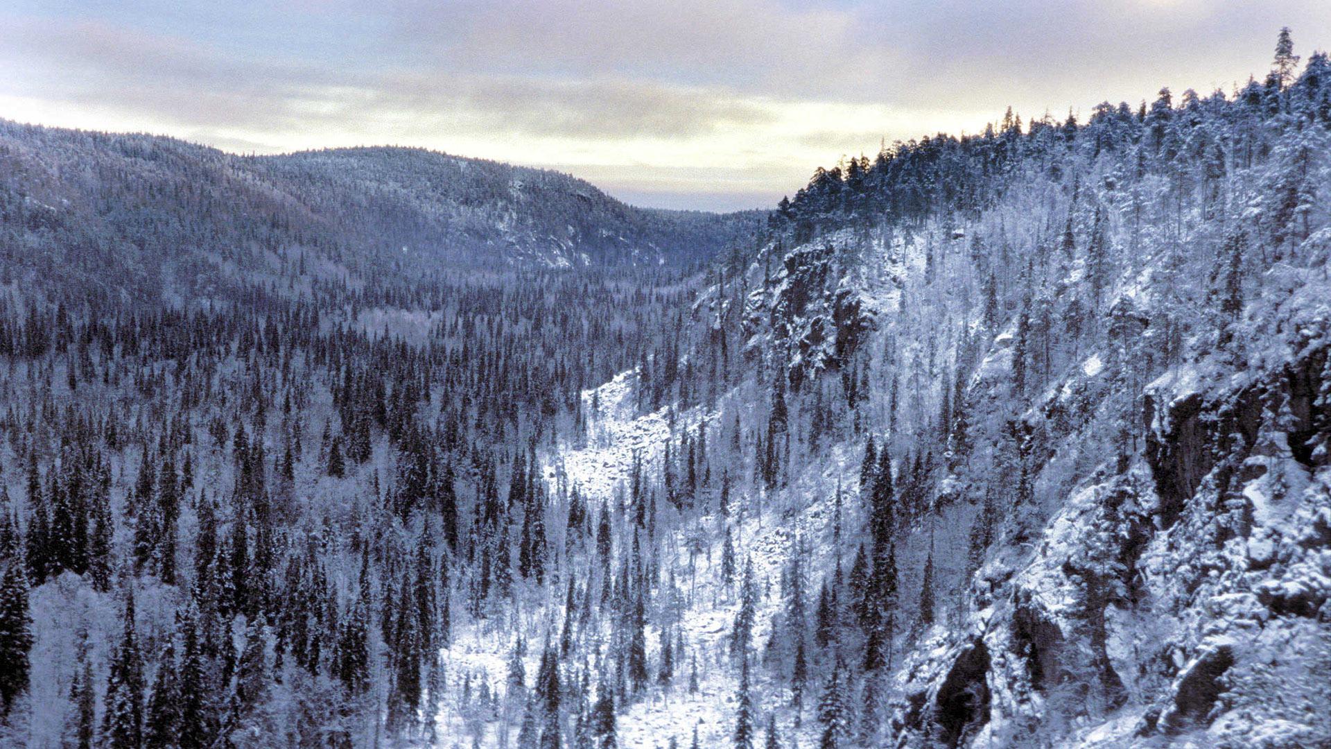 Talviretkeilya Lapin Luonnossa Opettajalle Oppiminen Yle Fi