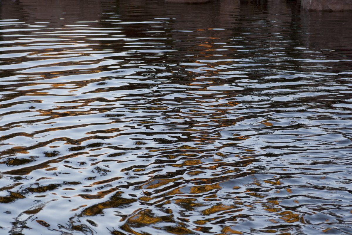 Stock photo: Ripples by abqchief
